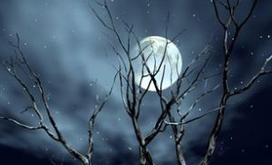 Đêm cô đơn