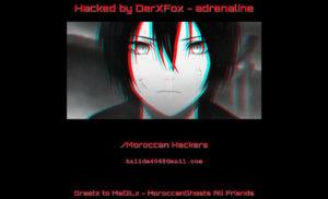 Toàn bộ website trực thuộc Đại học Quy Nhơn bị tấn công